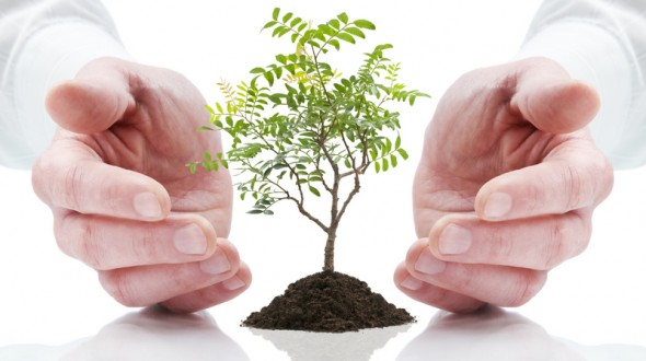lead-nurturing-campaign