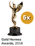 Gold Hermes Award