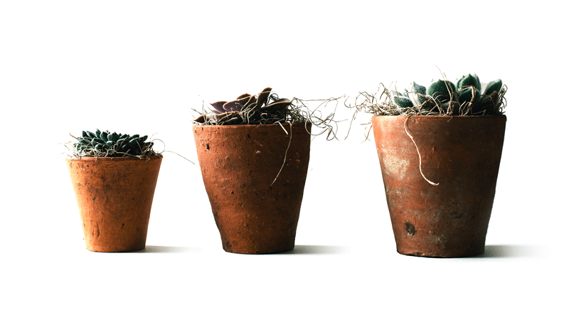 All You Wanted to Know About Growth Driven Design - Featured Image
