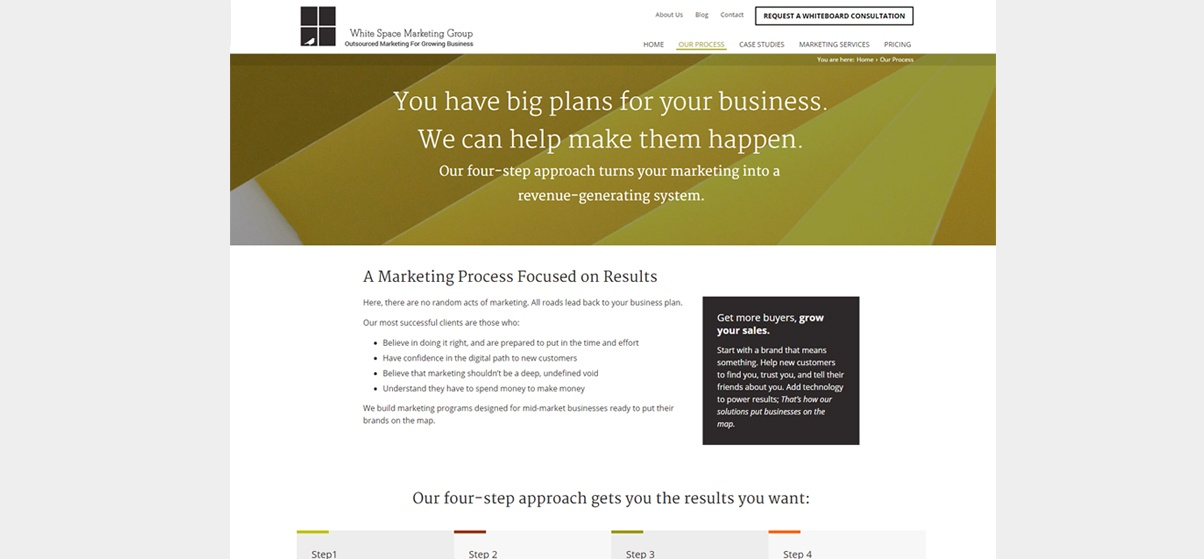 strategic-marketing-consulting-whitespacemarketing-WSMG-Full-Process-Page